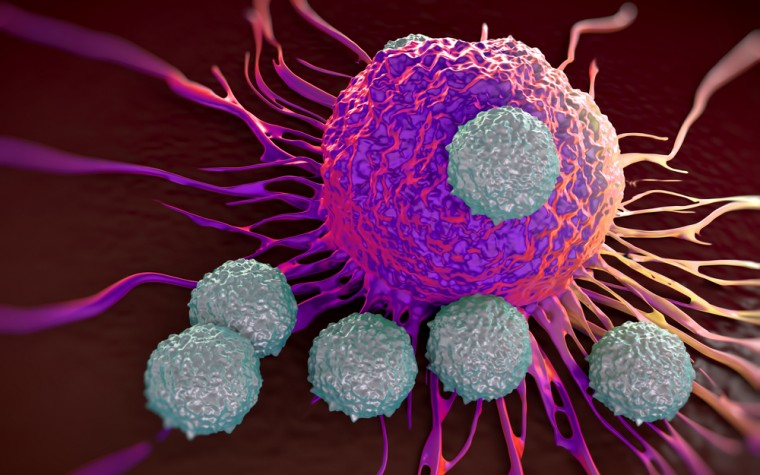 cancer clinical trial