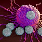 Mesothelioma immunotherapy combo