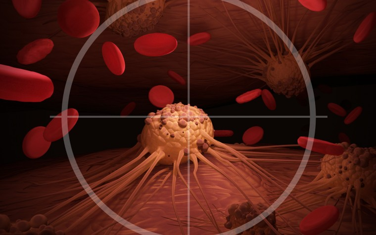 Checkpoint inhibitors and cancer