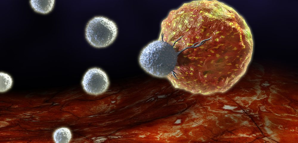 Targeting a Protein Seen to Spur Anti-Tumor Activities of Immune T-Cells in Animal Cancer Models