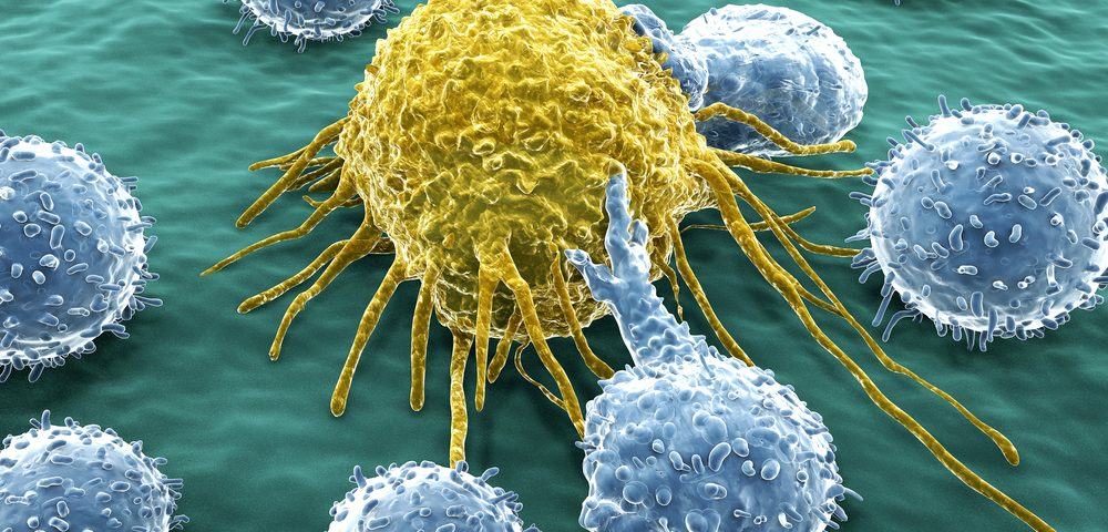 Newly Developed Molecule Boosts Anti-cancer Immunity, Mouse Study Shows