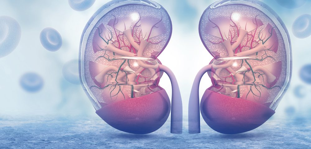 Combo Therapy May Prevent Kidney Transplant Rejection in Certain Cancer Patients